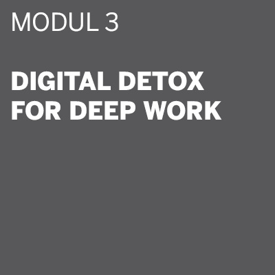 THE DIGITAL DETOX® | Seminar Modul 3: Digital Detox for Deep Work